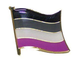 Asexual Flag Enamel Lapel Pin