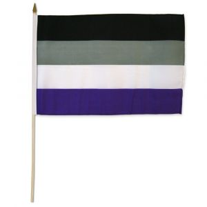 """Asexual Stick Flag (12"""" X 18"""")"""