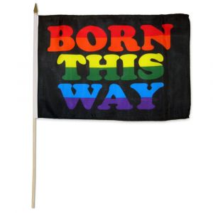 "Born This Way Stick Flag (12"" X 18"")"