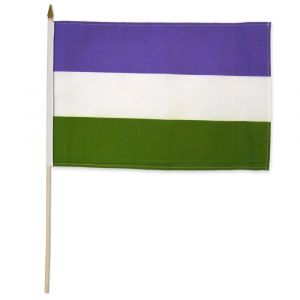 "Genderqueer Stick Flag (12"" X 18"")"