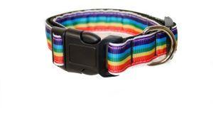 Bright and Fun Striped Rainbow Pet Collar