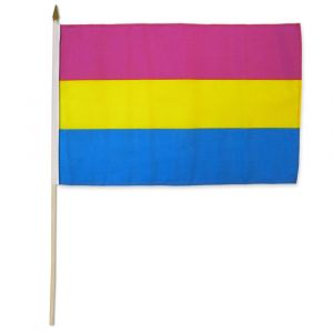 "Pansexual Stick Flag (12"" X 18"")"