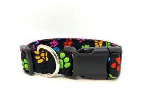 Rainbow Paw Print Collar