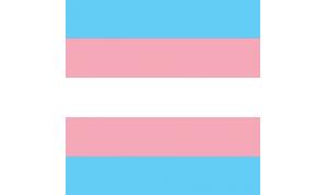 Transgender Flag Bandana