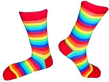 Rainbow Crew Socks