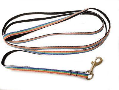 Rainbow Pet Leash